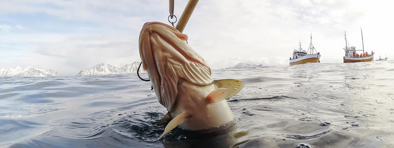 Lofoten torskefiske. Foto.
