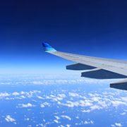 Foto av flyvinge.