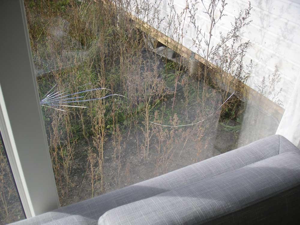Foto av glassrute med sprekker fra kantskade